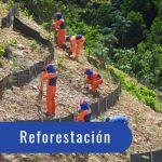 ORGASORB inside reuso agua descontaminar metales pesados glifosato para reforesta silvestre bosque limpio